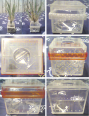 Коробочки из оргстекла для аквариумных растений,  разных размеров