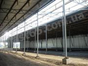 Строительство ангаров в Виннице,  строительство зернохранилищ,  Украина.