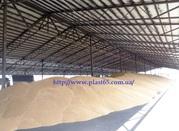 Строительство зернохранилищ,  овощехранилищ,  ангаров для животных (свин